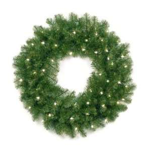 National Tree Company AP7 300 30W 30 Inch Aspen Spruce Wreath with 50